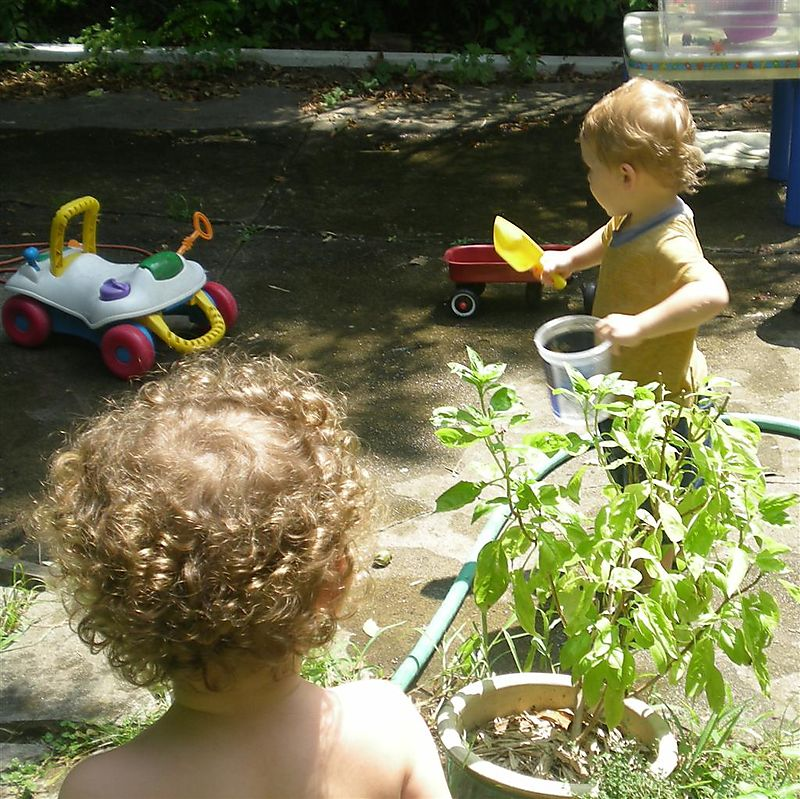 Outdoor play crop (Large)