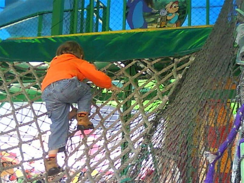 Climbing (Large)