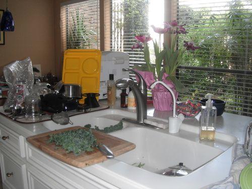 Kitchen Today Jan 19